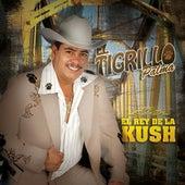 El Rey De La Kush by El Tigrillo Palma