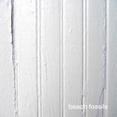Beach Fossils de Beach Fossils