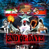 End Of Dayz (Mixtape) by Various Artists