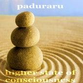 Higher State de Paduraru