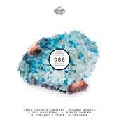 Runaway (Remixes) de Karen Harding and Tom Ferry