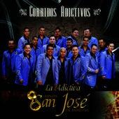 Corridos Adictivos by Banda San Jose De Mesillas