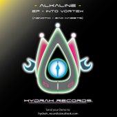 Into Vortex by Alkaline