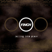 Falling Into Place by Finch