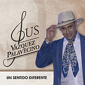 Un Sentido Diferente de Gus Vazquez Palavecino
