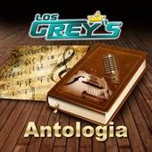 Antologia de Los Grey's