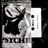 Nocturnal Passenger Live 87/88 de Psyche