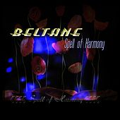 Spell of Harmony (Remix) by Beltane