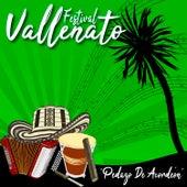 Festival Vallenato / Pedazo de Acordeón de Various Artists