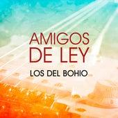 Amigos de Ley by Los Del Bohio
