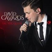 Tal Vez, Quizá de David Cavazos