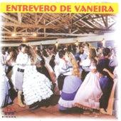 Entrevero de Vaneira von Various Artists
