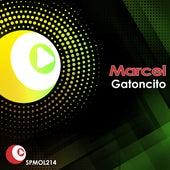 Gatoncito von Marcel