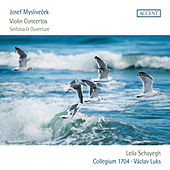 Myslivecek: Violin Concertos and Sinfonia & Ouverture by Various Artists