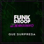 Que surpresa! (Participação especial de Nandinho) de Funkdroop