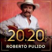 Visión 20.20 Éxitos de Roberto Pulido Y Los Clasicos