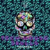 Tech House Skulls, Vol. 3 by Various Artists