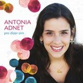 Pra Dizer Sim de Antônia Adnet