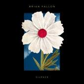 Silence de Brian Fallon