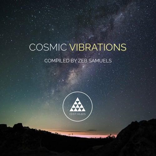 Cosmic Vibrations de Various Artists