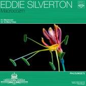 Macrocozm by Eddie Silverton
