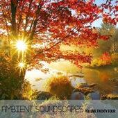 Ambient SoundScapes Vol 24 de Various Artists