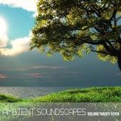 Ambient SoundScapes Vol 27 de Various Artists