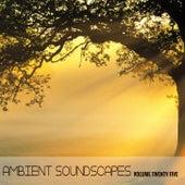 Ambient SoundScapes Vol 25 de Various Artists