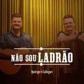 Não Sou Ladrão by Rodrigo