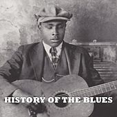 History of the Blues Vol. 1 by Various Artists