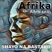 Shayo Na Bastard by Afrika and the Africans