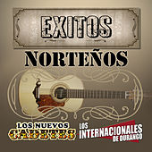 Exitos Nortenos by Various Artists