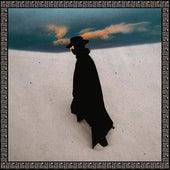 Ringos Desert Pt.1 von ZHU