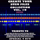 Create Your Stem Files Collection Vol 10 (Special Instrumental Versions And tracks with separate sounds [Tribute To Imagine Dragons-Jonas Blue-Ed Sheeran-Adele Etc..]) de Express Groove