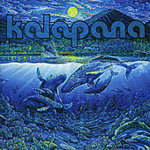 Blue Album de Kalapana