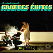 Grandes Éxitos de Various Artists
