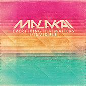 Everything That Matters is Invisible by Malakai