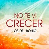 No Te Vi Crecer de Los Del Bohio