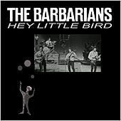 Hey Little Bird von The Barbarians