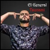 Tsunami de El General