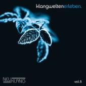 Neuklang Klangwelten Erleben Vol. 8 by Various Artists