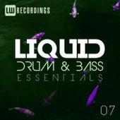 Liquid Drum & Bass Essentials, Vol. 07 - EP de Various Artists