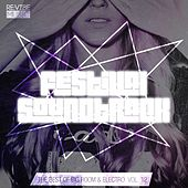 Festival Soundtrack - Best of Big Room & Electro, Vol. 12 by Various Artists
