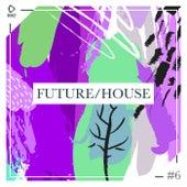 Future/House #6 de Various Artists