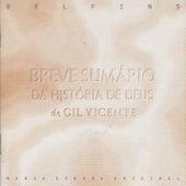 Breve Sumario Da Historia De Deus by Delfins
