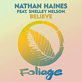 Believe de Nathan Haines