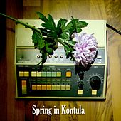 Spring in Kontula by Jimi Tenor