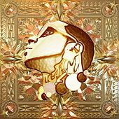 The Silent President by Lil B