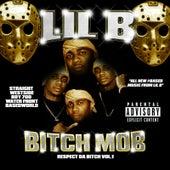 Bitch Mob Respect da Bitch by Lil'B