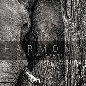 Harmony for Elephants von Various Artists